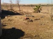 Terrain agricole 2 hect à vendre à kalaa sraghna