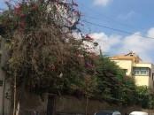 Villa ensoleiller Trois façade et terrain nu 801m