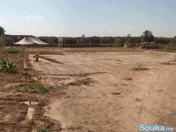 Urgent terrain à vendre proximité golf Amelkis