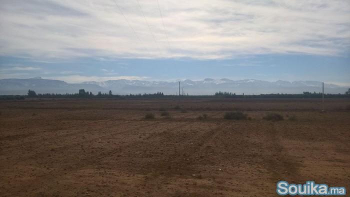Terrain titré à sidi abdellah ghiate 15 km de Marr