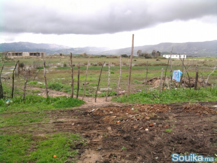 Terrain a vendre de 5 hectares a Tétouan