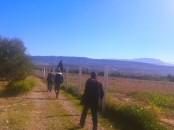 Ferme titrée 9 hectares à OURIKA
