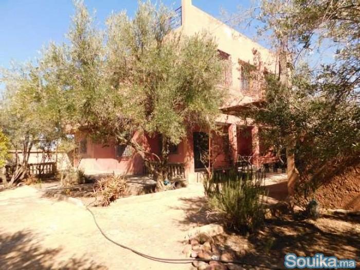 Maison de campagne à vendre à Sidi Abdellat Ghyat