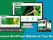 Développeur site web wordpress - Freelance