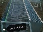 Cage de lapin et de caille