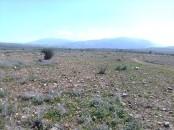 Terrain titrée 6.88 ha à 60 km de Marrakech